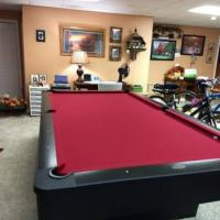 9' Accu-Fast Olhausen Pool Table